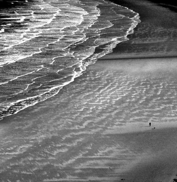 Image 51  Walking the dog  Gower Peninsula, Wales