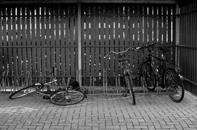 02/09: fallen bike