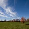 @20101031-skies-3