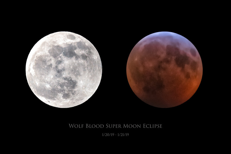 Wolf Blood Super Moon & Eclipse