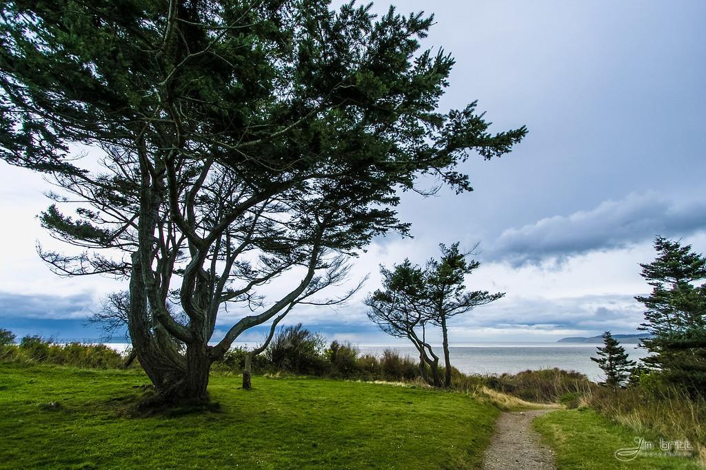 Whidbey Island, WA