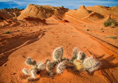 Rugged landscape outside of Page, Arizona.