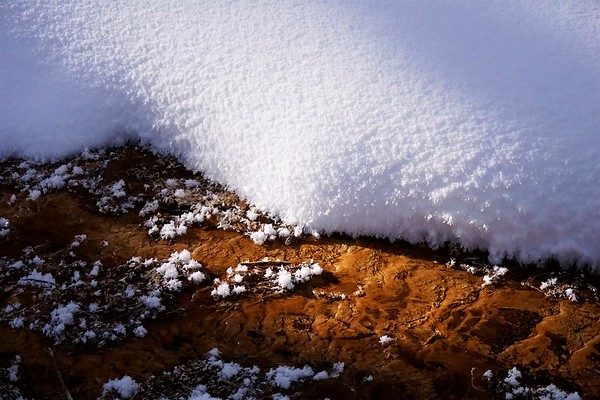 Snowflakes on Ochre Bed