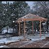 Back Yard Snow Falling