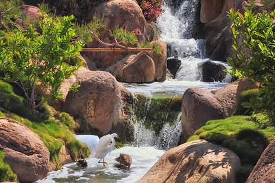 The Japanese Garden, Van Nuys, CA