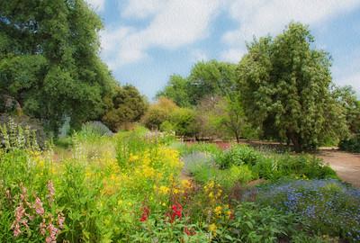 The Fullerton Arboretum