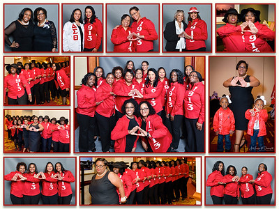 Delta Sigma Theta Sorority, Inc. Schaumburg-Hoffman Estates Alumnae Chapter_New Initiate Presentation DeSTiny 13, Photography by Levern A. Danley III