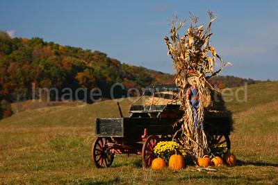 Fall wagon - 10/19/08