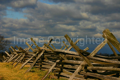 Fence Row at Antietam