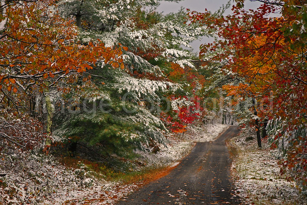 Fall snow along the mountain - 11/09/09