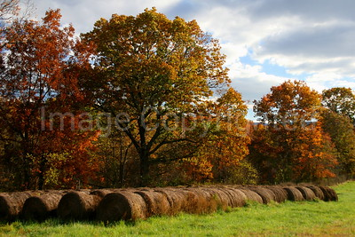 Hay Bales in Fall - 11/5/06