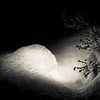 Snow Globe s/w