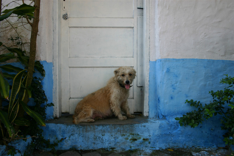 Sao Sebastio, Brazil (2004) © Copyrights Michel Botman Photography