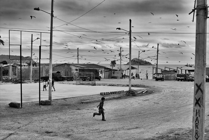 """The birds,"" Ecuador, north of Puerto Lopez, 2014. Original Fine Art Documentary Photograph by Michel Botman © north49exposure.com"