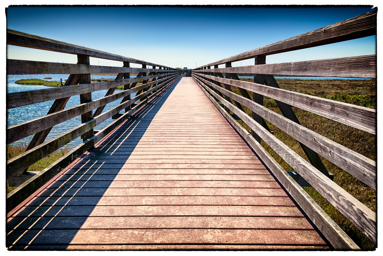 Wetlands Boardwalk: Bolsa Chica, California