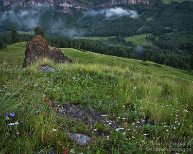 Morning mist in the Chama Basin, Colorado, July 2009.