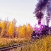 Steam Train in Fall