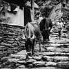 The Boy's Mountain<br /> Annapurna, Nepal
