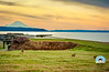 Tourism and Wildlife at Fort Casey, near Coupeville on Whidbey Island, Washington