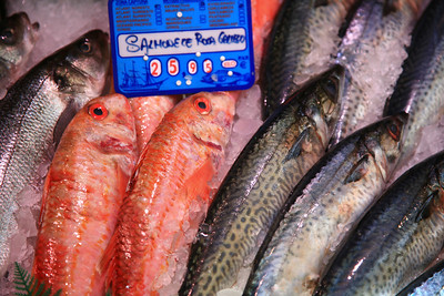 Fish at market, Madrid.