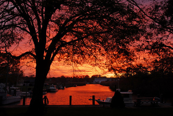 Canal Sunset, 2006