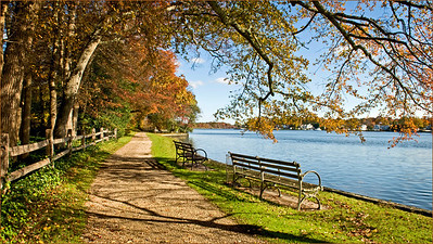 Autumn, Connetquot River at the Bayard Cutting Arboretum