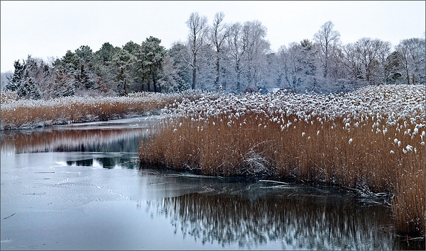 Winter on Browns River