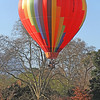 April 2011 Hot Air balloons 8