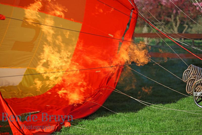 April 2011 Hot Air balloons  29