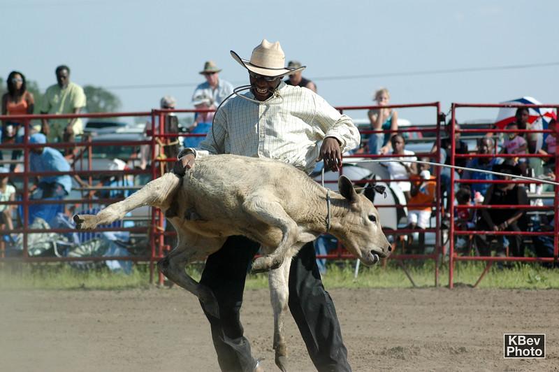 Gotcha (Pembroke Rodeo, 2006)