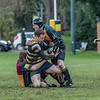 Windsor Jesters rugby