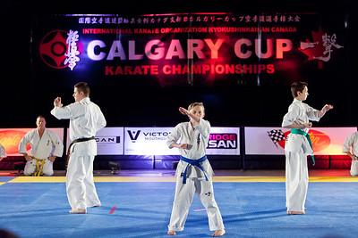 Calgary Kyokushin Tournament 2015
