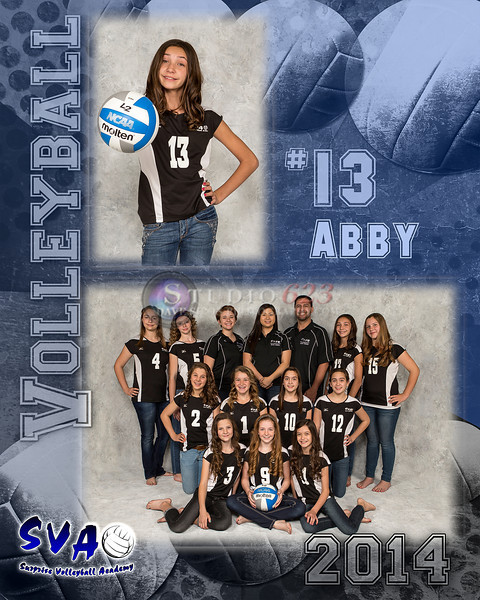 Volleyball12MMate_8x10_SVA_Abby