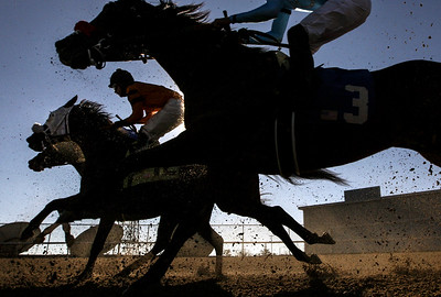 Horses take turn 1 during the 6th race at opening day of Oaklawn Jockey Club in Hot Springs, Arkansas, Friday, January 12, 2018.