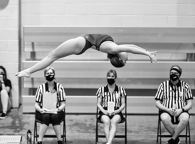 CHSAA Diving State Championships