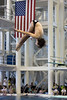 state dive meet