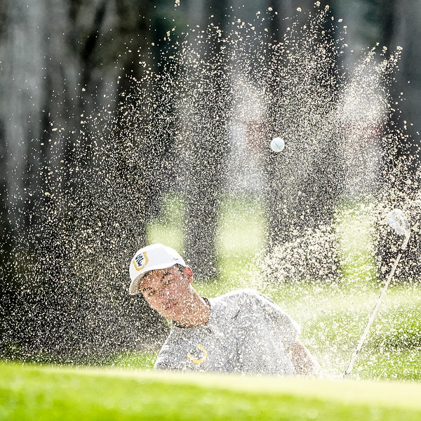 3/30/18: USF MGOLF at the Goodwin at TPC Harding Park in San Francisco, CA.  Image by Chris M. Leung for USF Dons Athletics