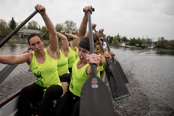 SEGO2018-0515-048 15 May 2018  Sportchicks Dragon Boat Team practice on Rideau Canal from Rideau Canoe Club in Ottawa, Ontario.   © Serge Gouin 2018  www.segophoto.ca