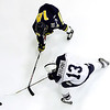 Hockey<br>Drexel at Penn State<br>2008