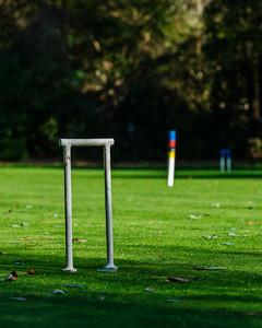 Croquet Wicket