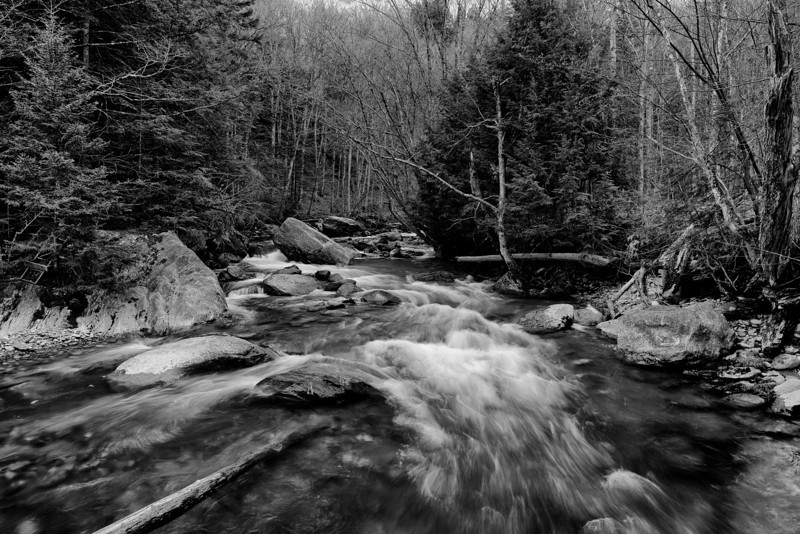 Foster's Place, black and white - Stowe, VT