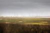St. Marys Ga. Raining on Marsh