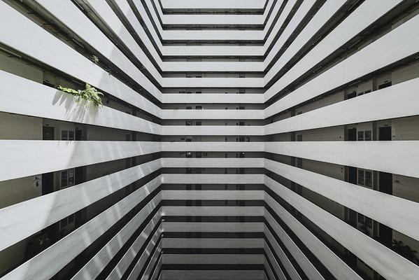 White Stripe