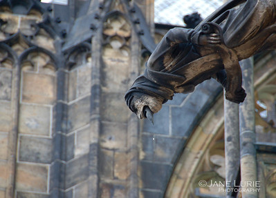 Gargoyle's Drool, St. Vitas Cathedral, Prague