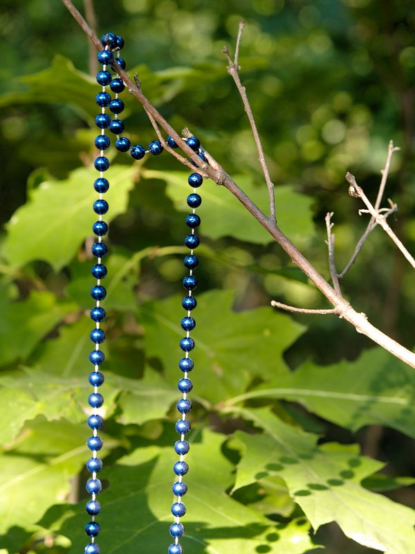 Prayer beads found hanging along the path of a forest.
