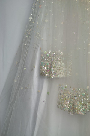 IMG#6434 Sequins and Lace
