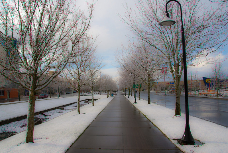 """2/25/11<br /> Yesterday was another Snow day here in Portland OR. 1"""" of snow and kids stay home from school! Really!<br /> Thanks for all your coment's on yesterdays """"Bridge into the fog"""" photo. Not to often, do you see the mighty Columbia river so calm."""