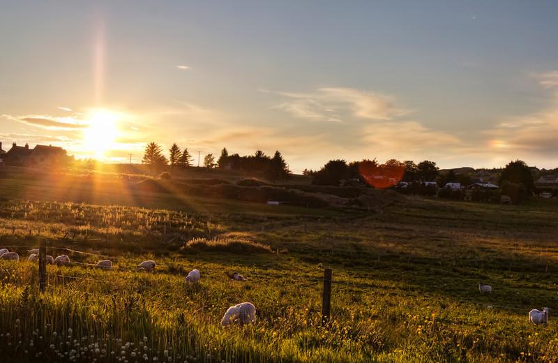 Sunset in Stornoway<br /> Sunset in Stornoway