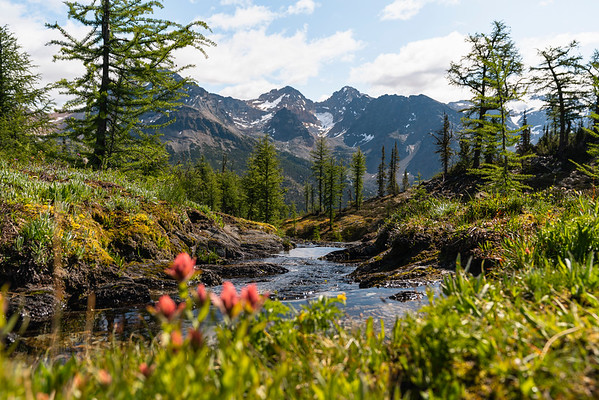 Landscapes of the Purcell Mountains in British Columbia 2019
