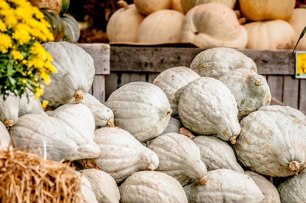 blue pumpkins on farmers market display
